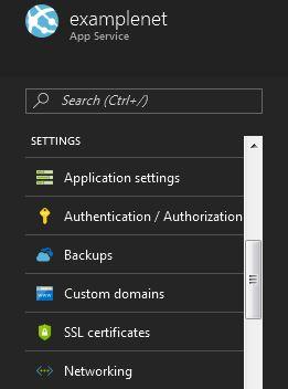 custom-domain-option