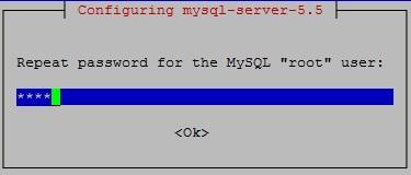 mysql-passwd-confirm-pic